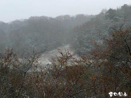 2015-01・01 雪の里山 (1).JPG
