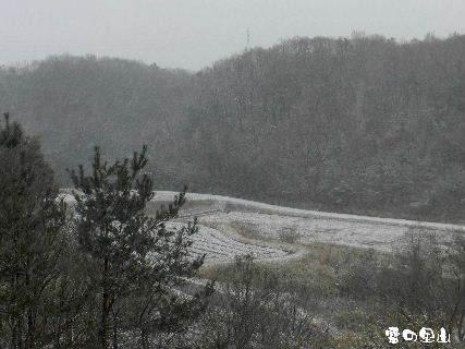 2015-01・01 雪の里山 (2).JPG
