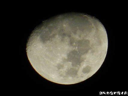 2015-01・02 新年の空に輝く月.JPG