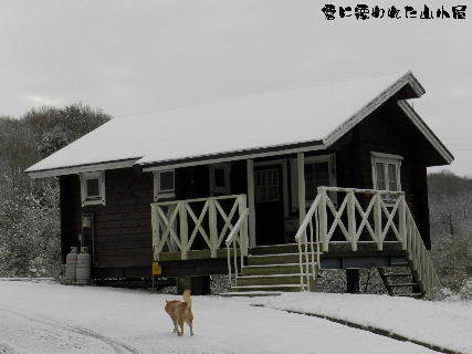 2015-01・03 雪に覆われた山小屋.JPG