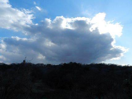 2015-03・24 里山光景 (1).JPG