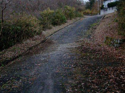2015-12・25 導入道路の大掃除模様・・・ (7).JPG