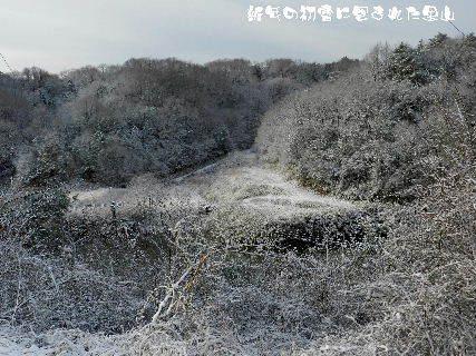 2015-新春の初雪に包まれた里山 (2).JPG