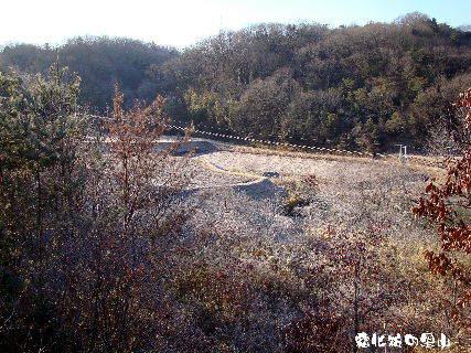 2016-02・08 厳寒の里山模様を・・・ (5).JPG