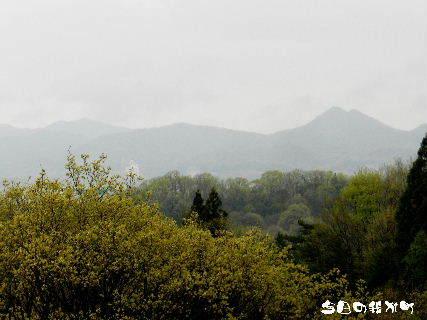 2016-04・13 今日の我が町.JPG