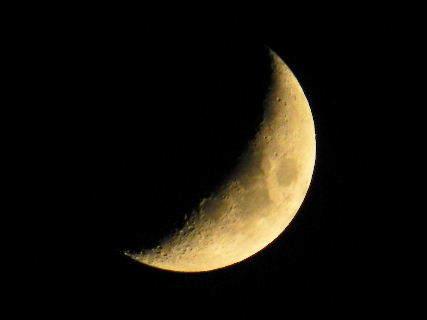2016-06・10 夜半の空で輝く月を・・・  (1).JPG