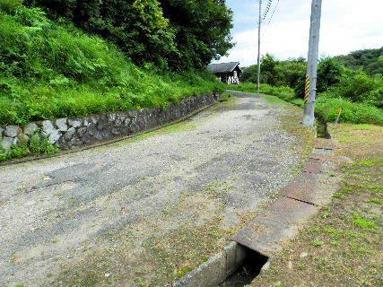 2016-07・15 我が家のスナップ (3).JPG