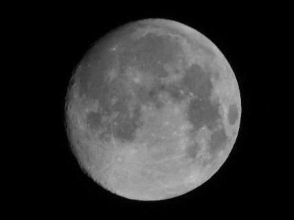 2016-08・17 葉月の空に輝く月を・・・ (1).JPG