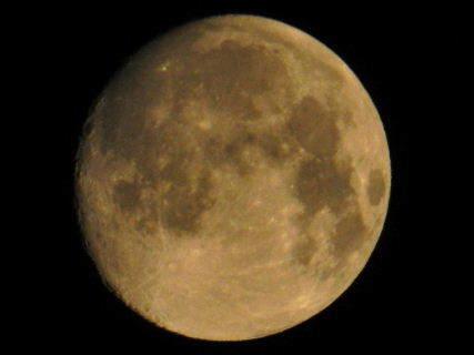 2016-08・17 葉月の空に輝く月を・・・ (2).JPG