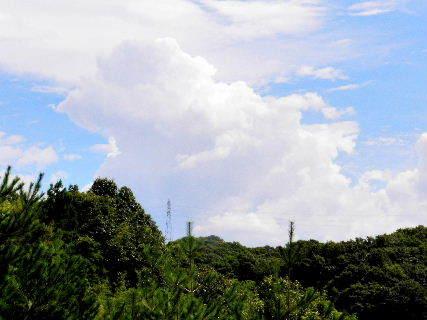 2016-08・24 葉月の空に沸き立つ雲 (2).JPG