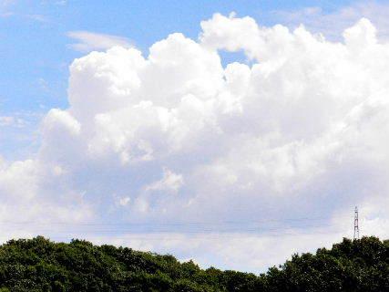 2016-08・24 葉月の空に沸き立つ雲 (3).JPG