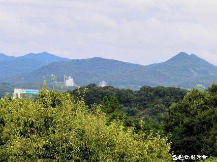 2016-09・23 今日の我が町.JPG