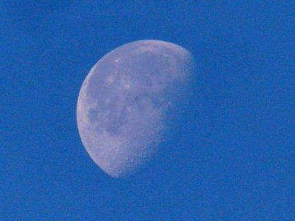 2016-12・19 早朝の空に輝く月 (2).JPG