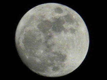 2017-01・11 夜半の空に輝く月 (2).JPG