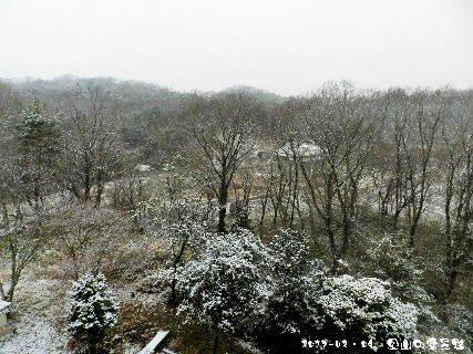 2017-02・09 里山の雪景色・・・ (3).JPG