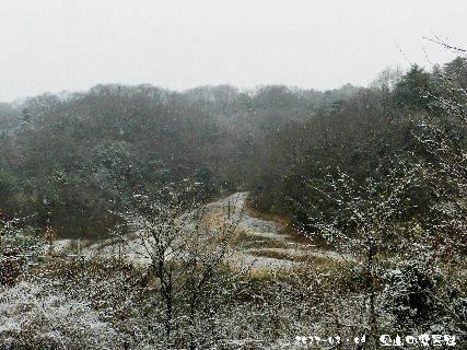 2017-02・09 里山の雪景色・・・ (5).JPG