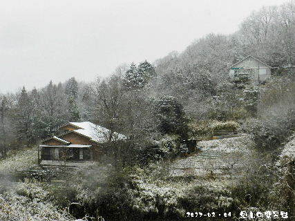 2017-02・09 里山の雪景色・・・ (8).JPG