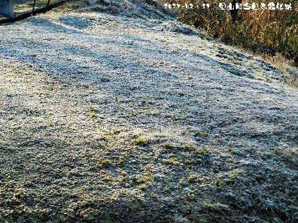 2017-02・17 里山は今日も霜化粧 (1).JPG
