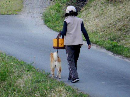 2017-04・16 散歩の途中で・・・.JPG