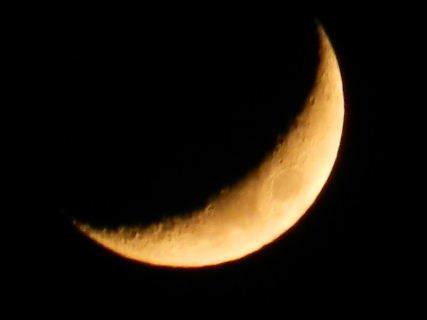 2017-05・01 皐月の夜空に輝く月 (2).JPG